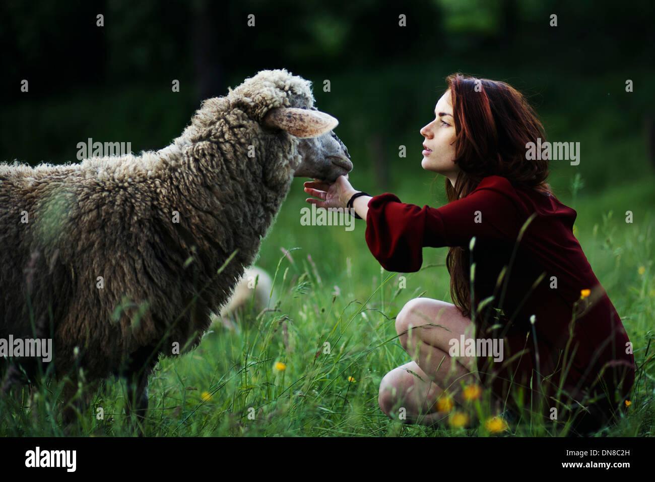 Jeune femme avec des moutons dans un pré Photo Stock