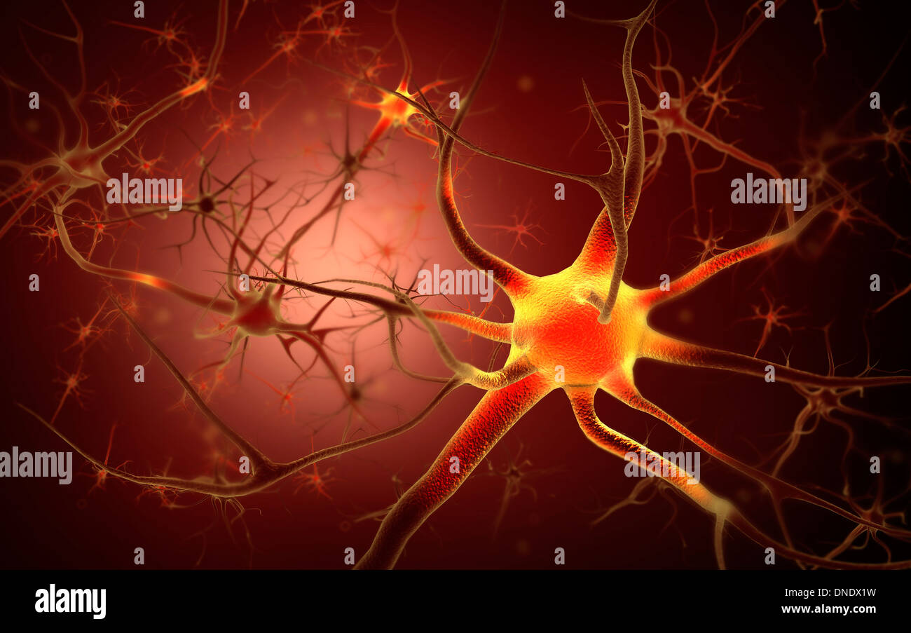 Image conceptuelle du neurone. Photo Stock