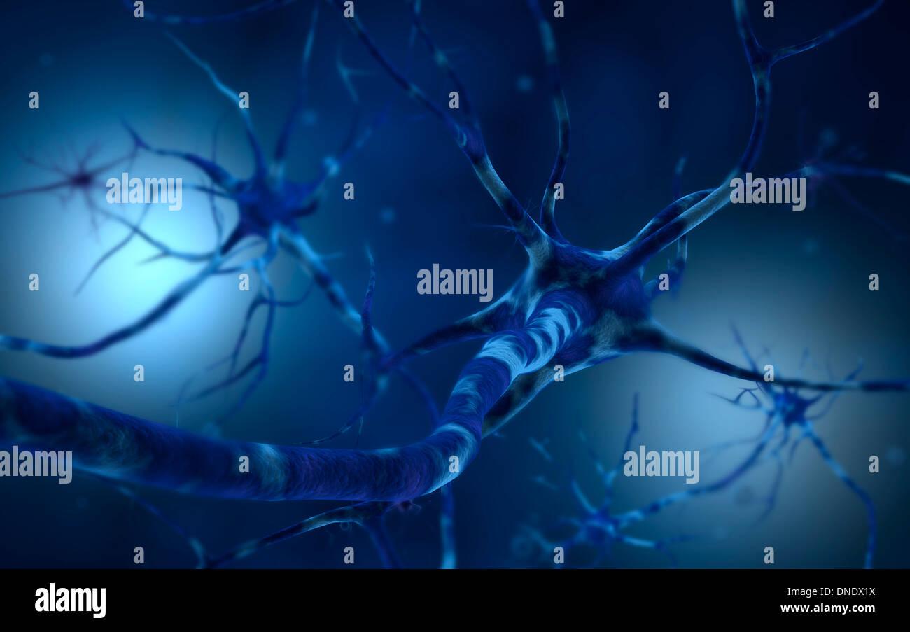 Image conceptuelle du neurone. Photo Stock