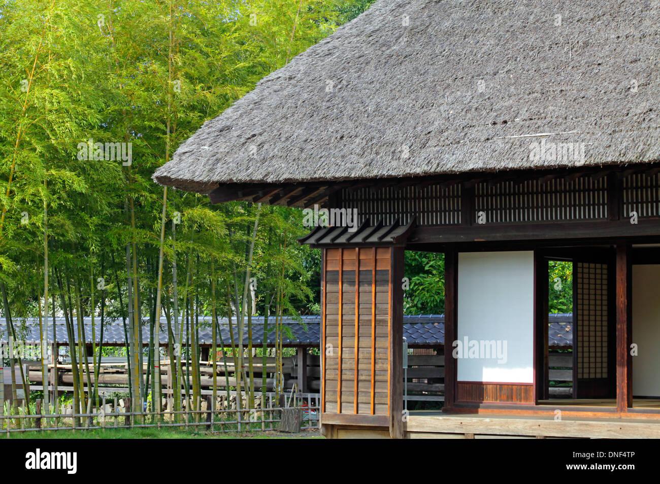 Toit de chaume et bosquet du bambou dans le jardin vieille maison ...