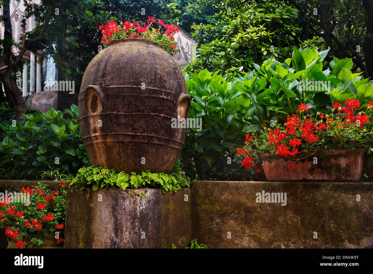 Les plantes dans le jardin, la Villa Cimbrone, Ravello, Province de Salerne, Campanie, Italie Banque D'Images
