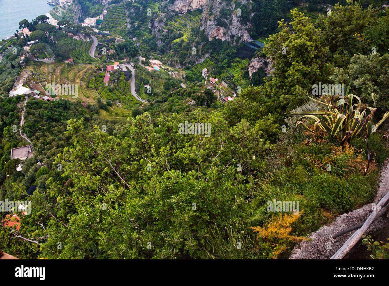 Arbres sur une colline, la Villa Cimbrone, Ravello, Province de Salerne, Campanie, Italie Banque D'Images