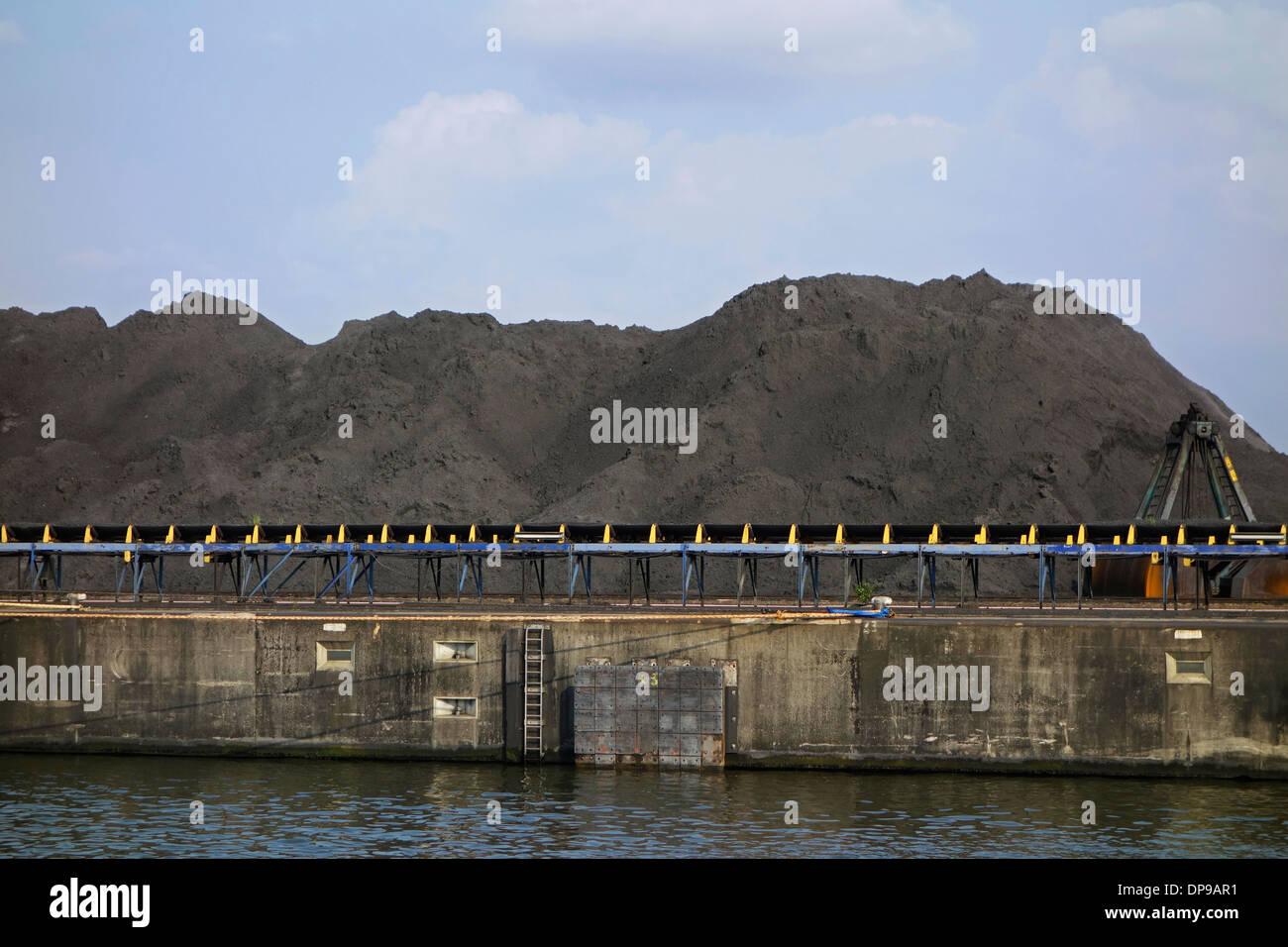 Des tas de charbon à Sea-invest / Ghent Coal Terminal / GCT au port de Gand, Flandre orientale, Belgique Photo Stock