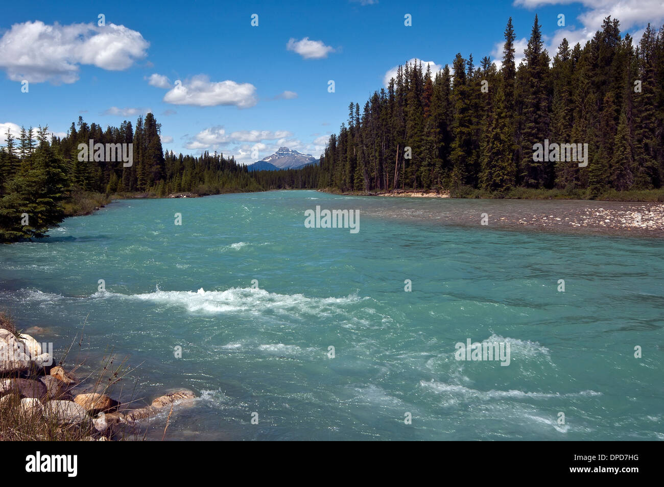 Bow River, Alberta, Canada Photo Stock