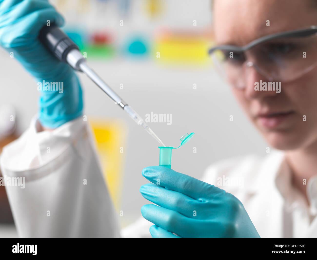 Le pipetage travailleur de laboratoire échantillon dans un flacon d'Eppendorf Photo Stock