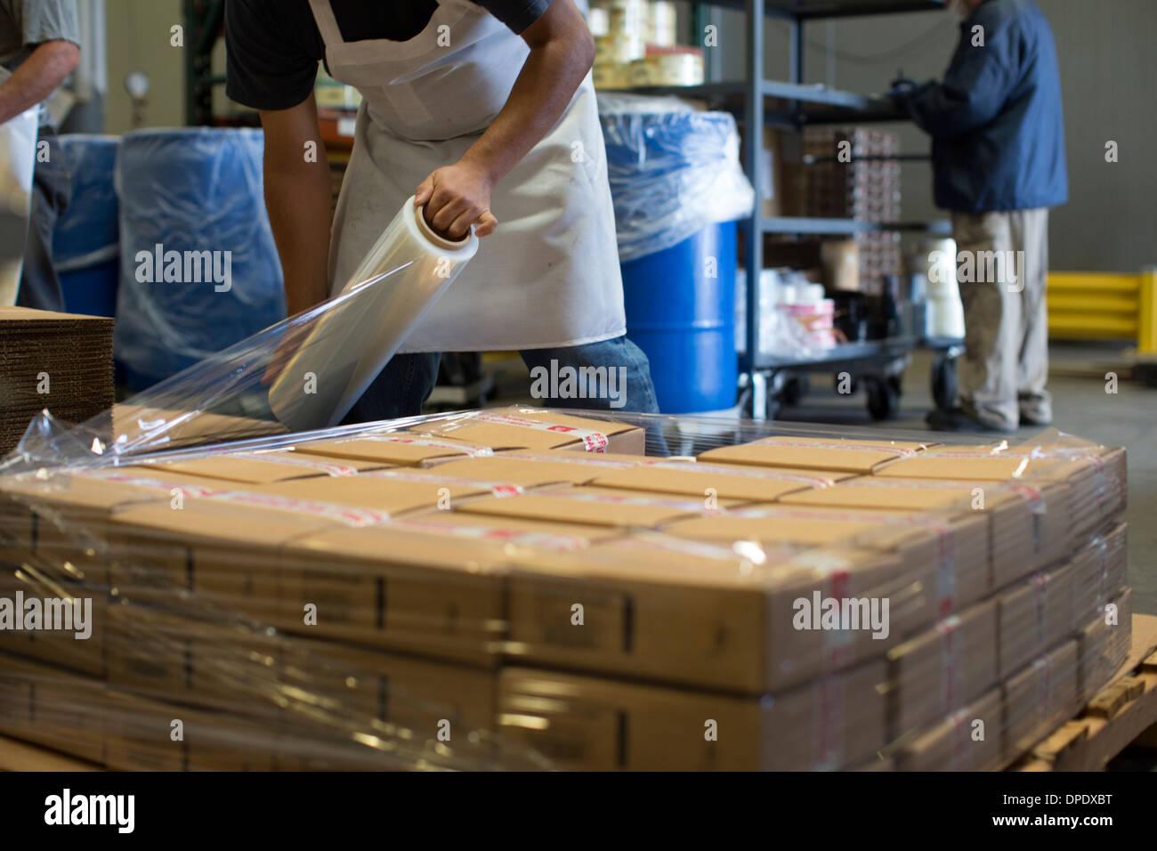 Travailleur de l'usine de boîtes de carton d'emballage avec Ziploc® Photo Stock