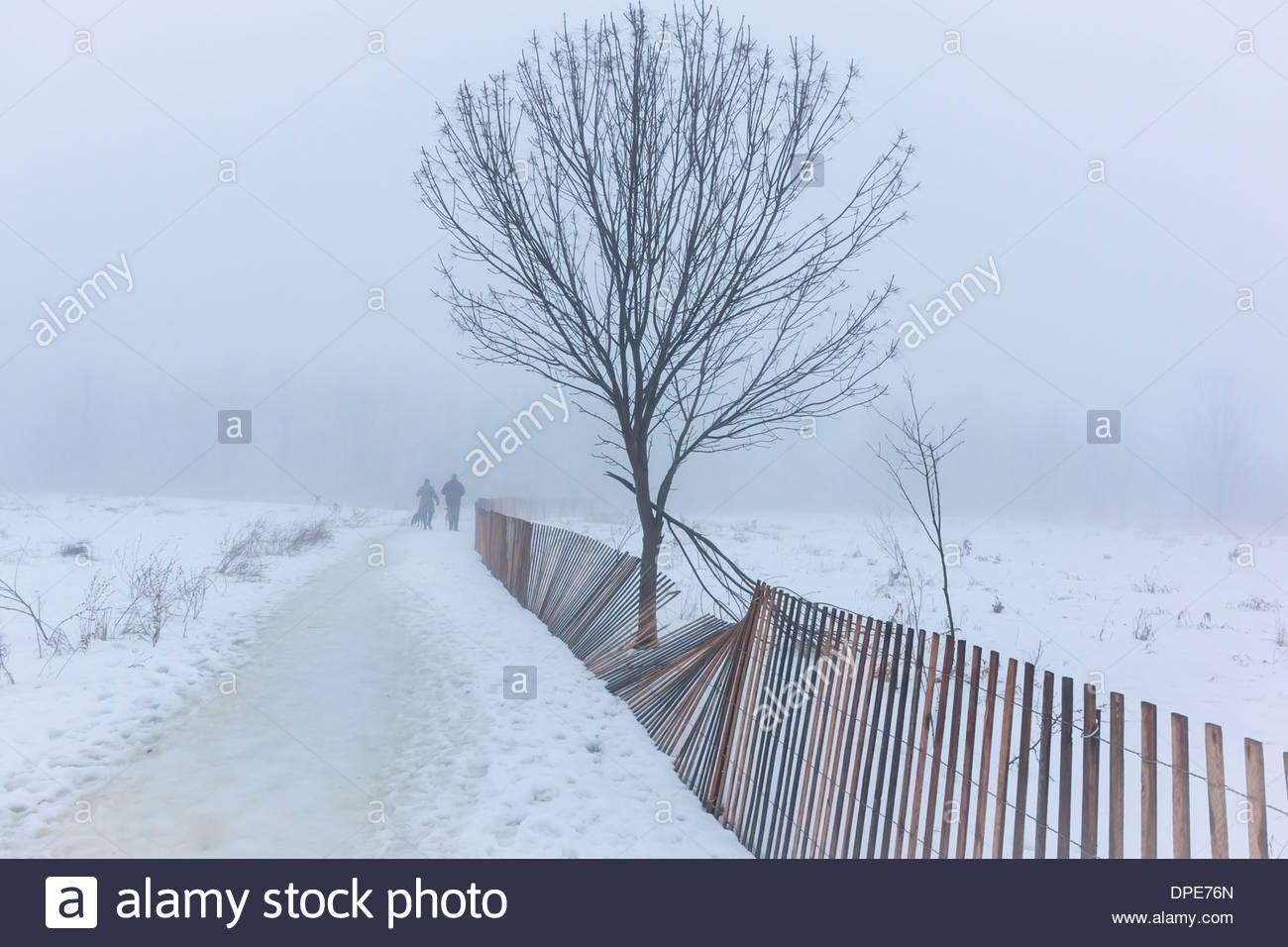 La promenade du chien à côté d'une clôture à neige dans le brouillard à cause de dégel de janvier à Scarborough Bluffs Park à Toronto (Ontario) Canada Photo Stock