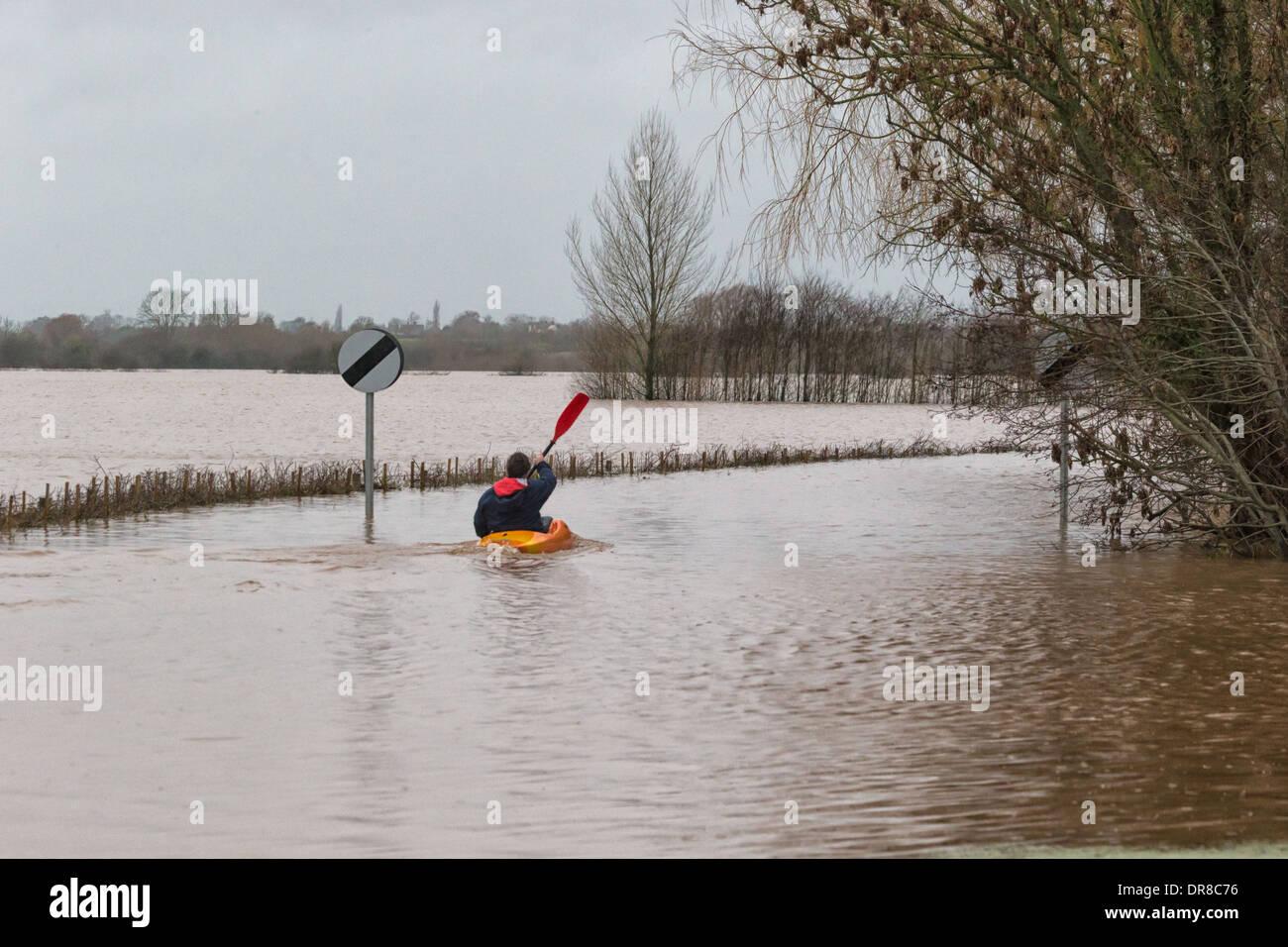 Le pagayage canoéiste coupes inondé Rd, Burrowbridge après la rivière Tone burst ses banques dans les inondations récentes Photo Stock