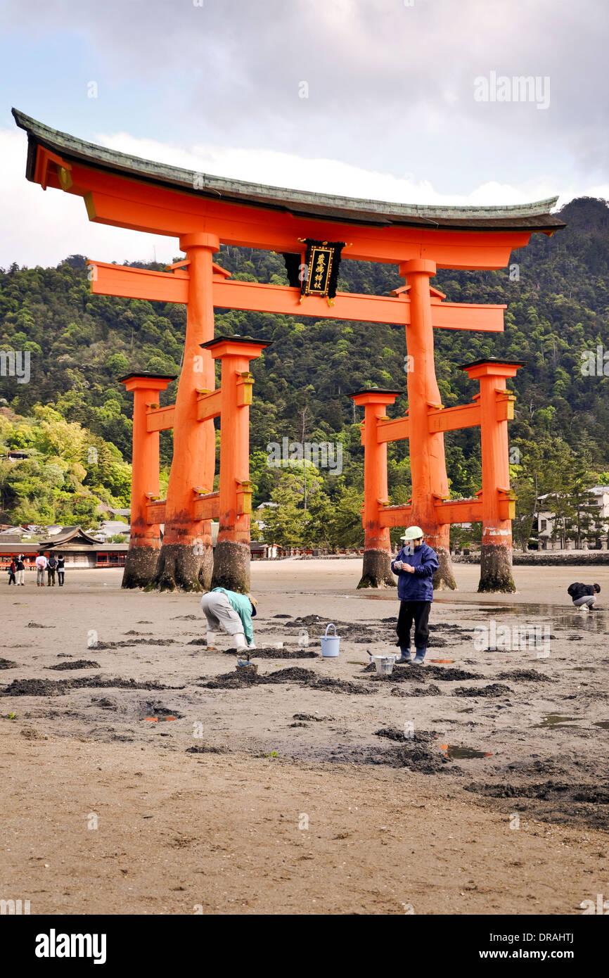Grand torii de Miyajima à marée basse - Shikoku, Japon Photo Stock