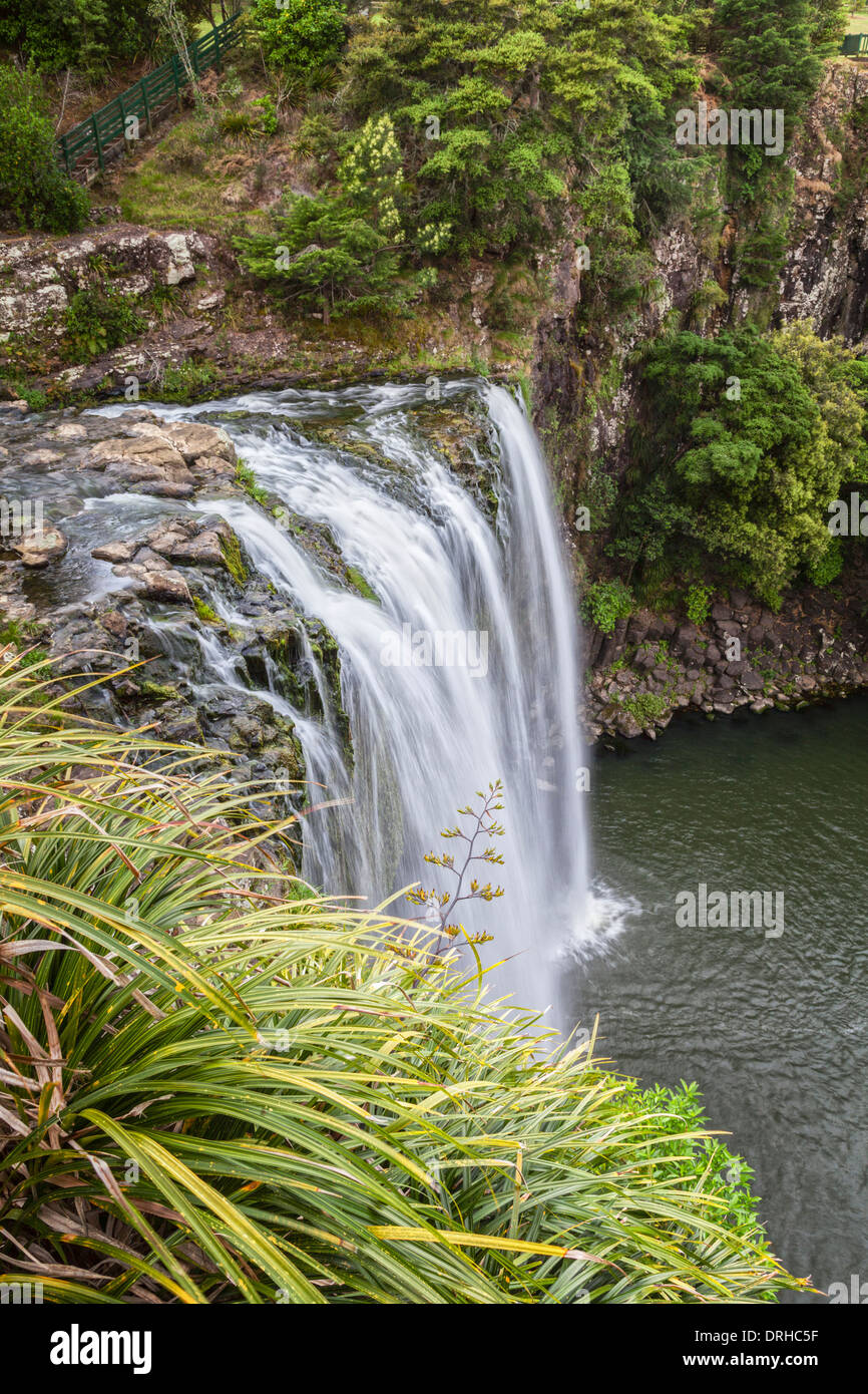 Whangarei Falls sur la rivière Hatea dans Northland, New Zealand. Photo Stock