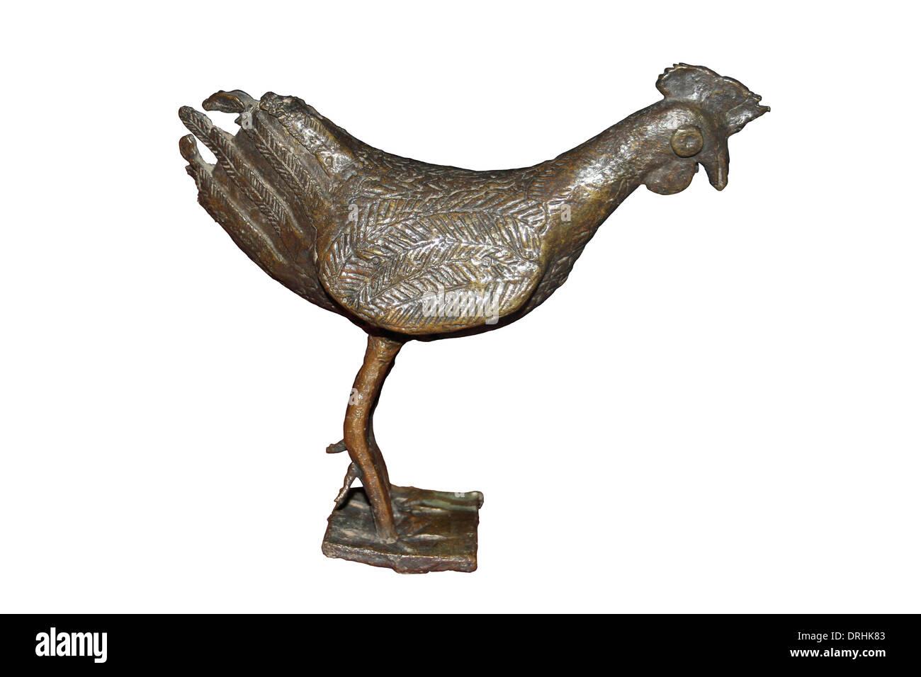 Gros noir nigérian coq