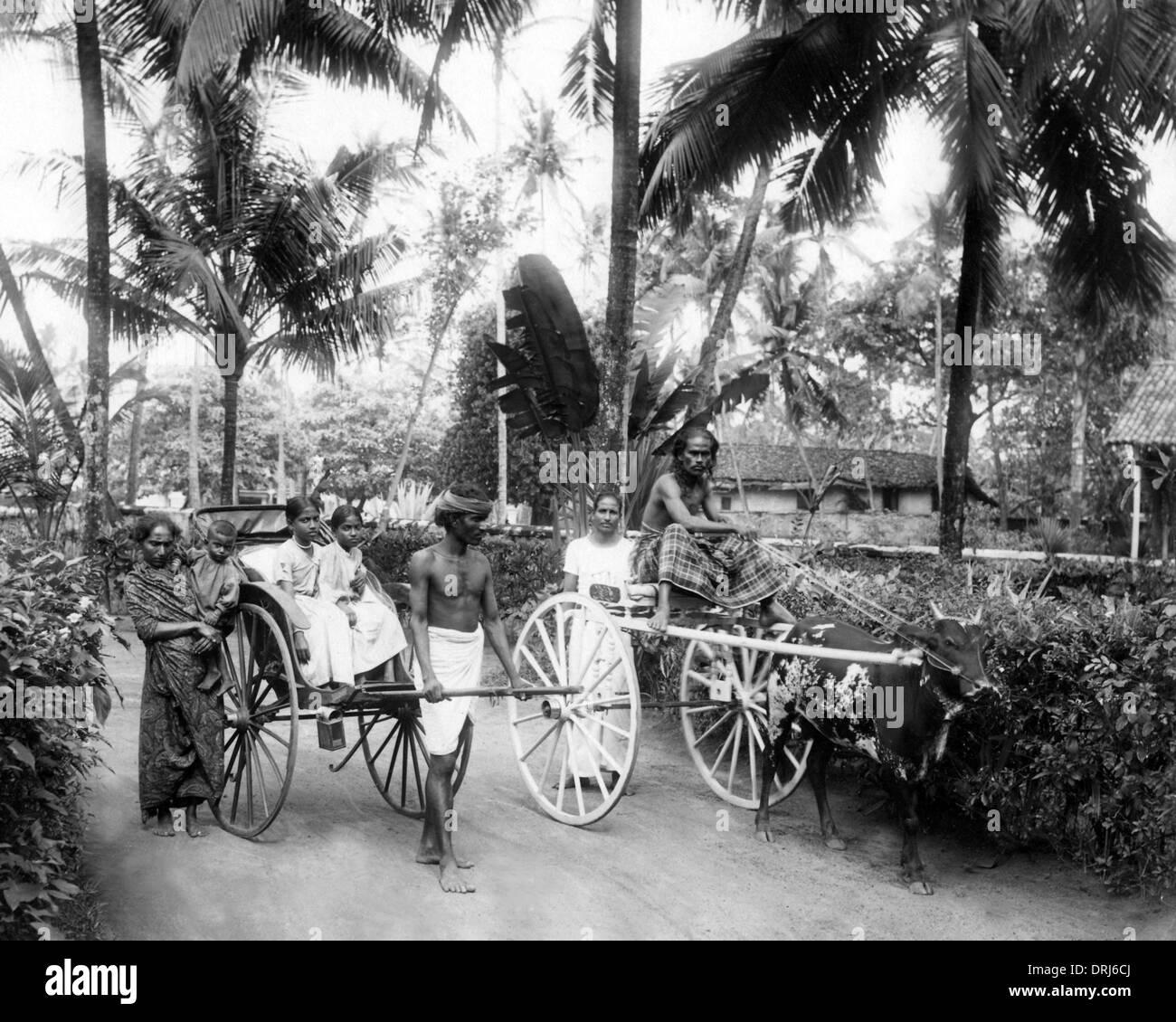 Modes de transport, de Ceylan (Sri Lanka) Photo Stock