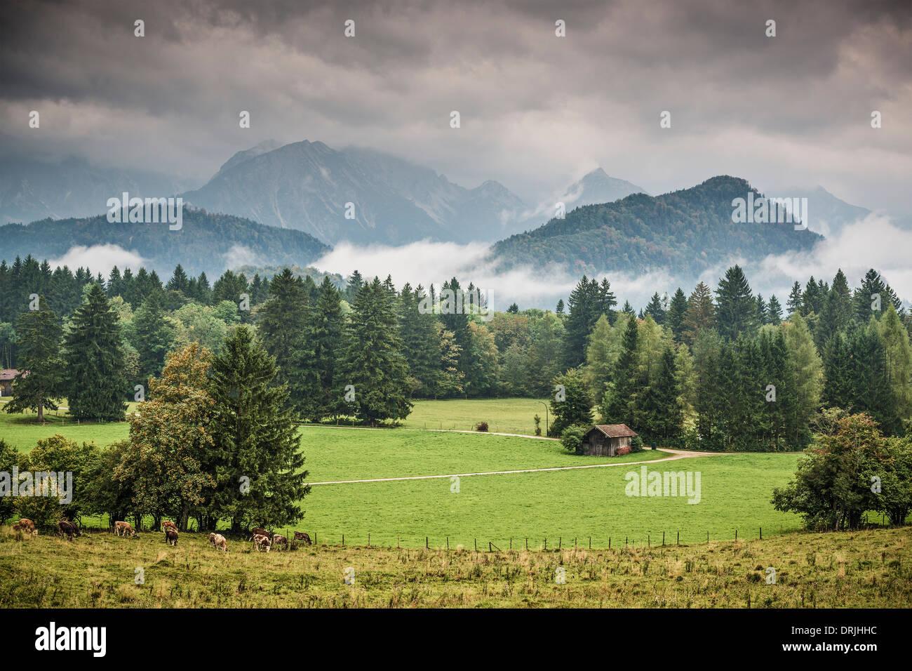 Les terres agricoles dans les Alpes bavaroises. Photo Stock