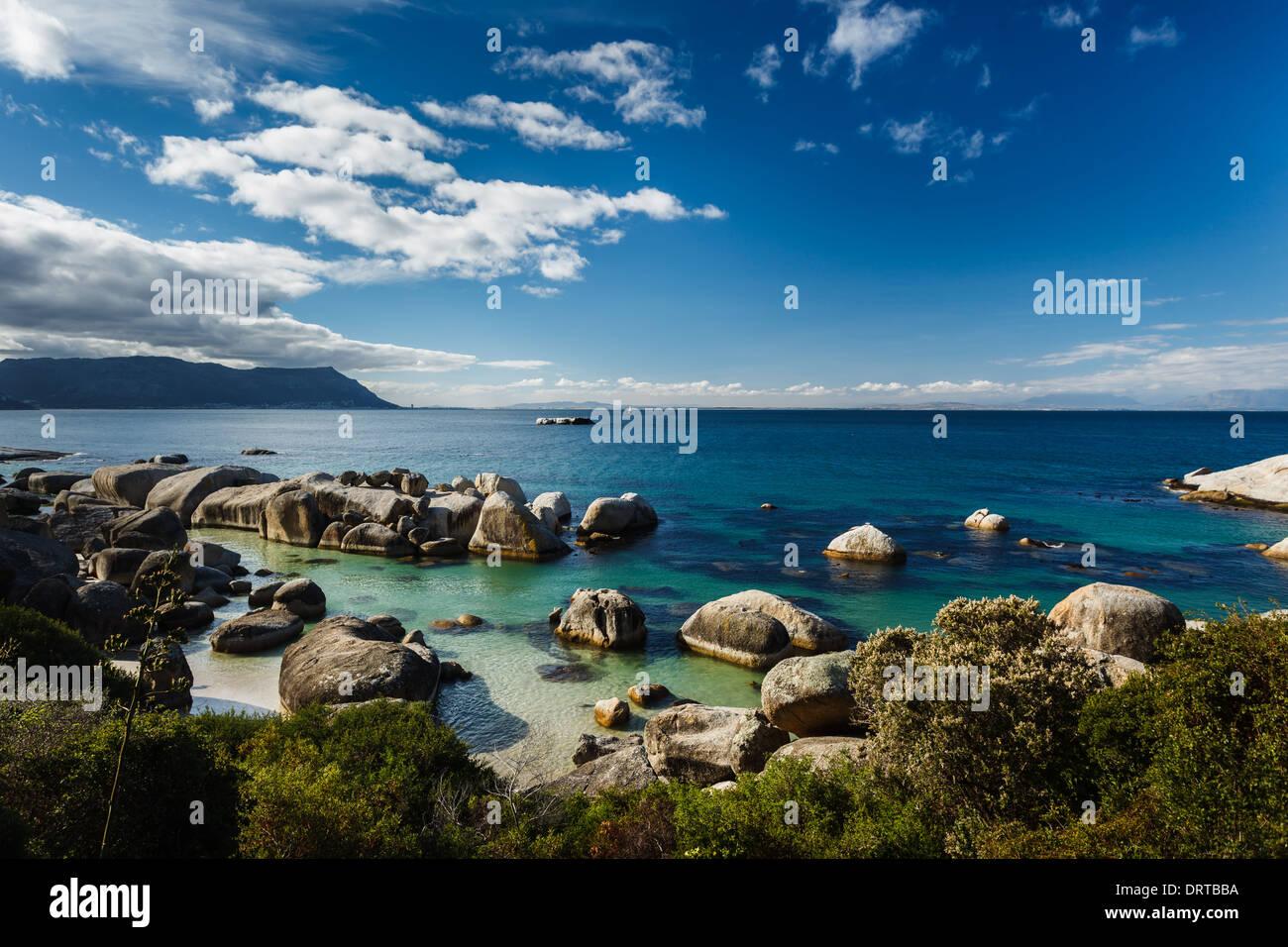 Vue paysage de manchot Spheniscus demersus reproduction côtières Photo Stock
