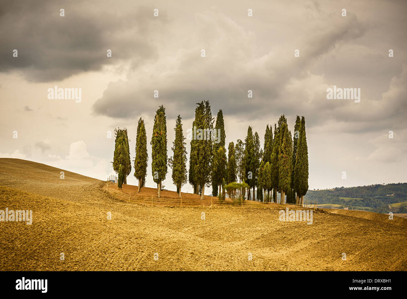 Paysage de Toscane Photo Stock