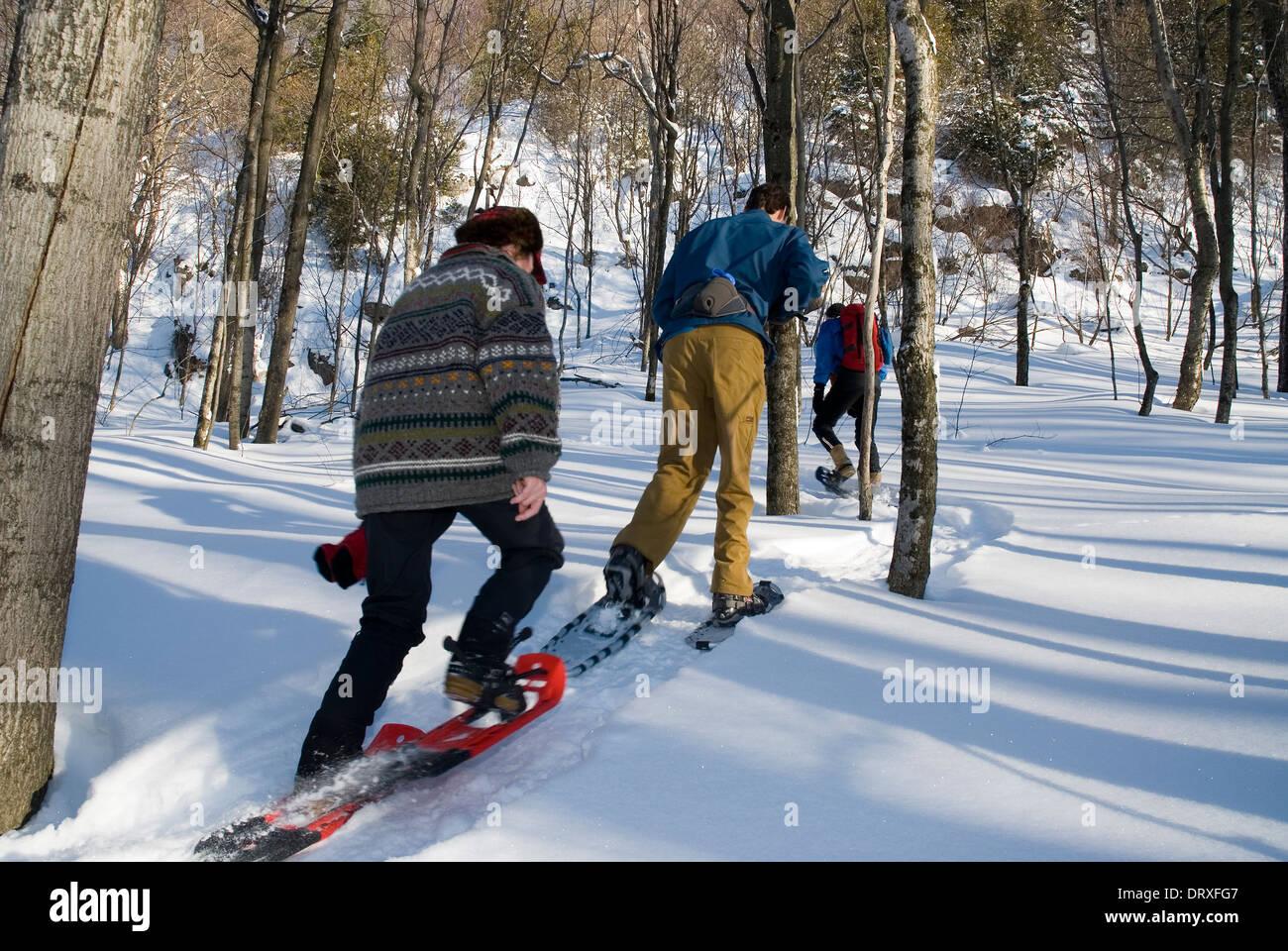 Trois personnes sur un sentier de raquette dans l'arrière pays à l'hiver. Photo Stock