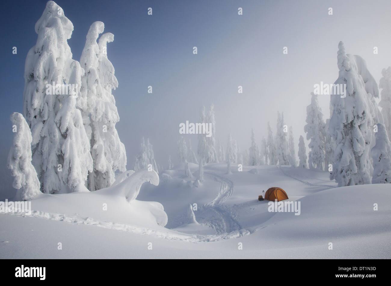 Une tente orange vif parmi les arbres couverts de neige sur une crête surplombant une montagne enneigée au loin Photo Stock