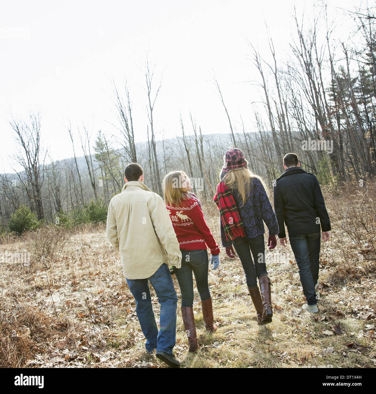 Un groupe de quatre personnes à pied entre forêt sur une journée d'hiver deux hommes et deux femmes Photo Stock