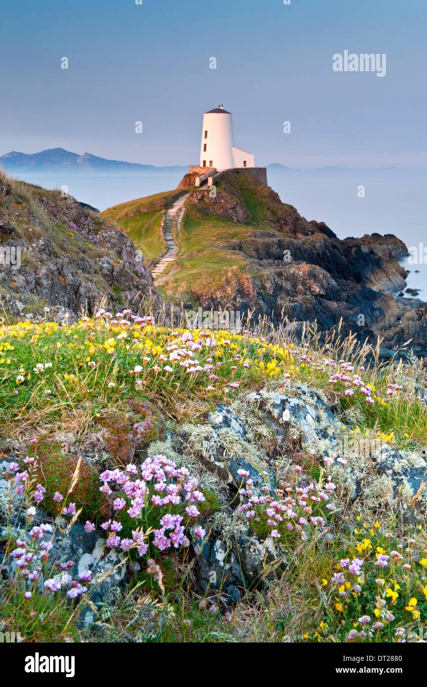 Tŵr Mawr Phare, l'île Llanddwyn, Newborough, Anglesey, au nord du Pays de Galles, Royaume-Uni Photo Stock