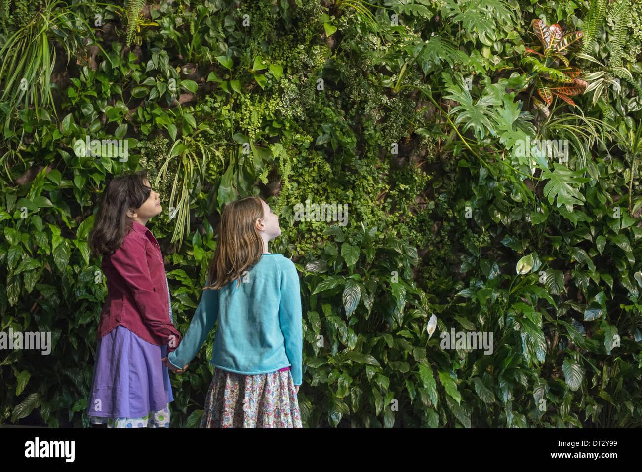 Mode de vie urbain deux enfants se tenant la main et à la recherche jusqu'à un mur couvert de feuillage de plus en plus d'une large gamme de plantes Photo Stock