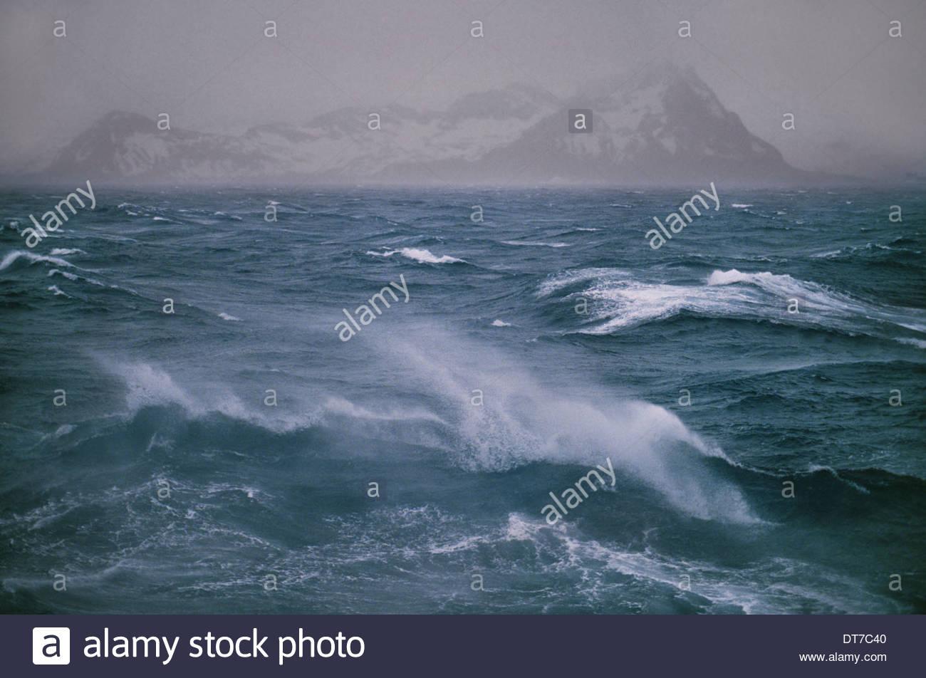 Une mer au large de la pointe nord de l'île de Géorgie du Sud dans l'île de Géorgie du Sud Iles Falkland Iles Falkland Photo Stock