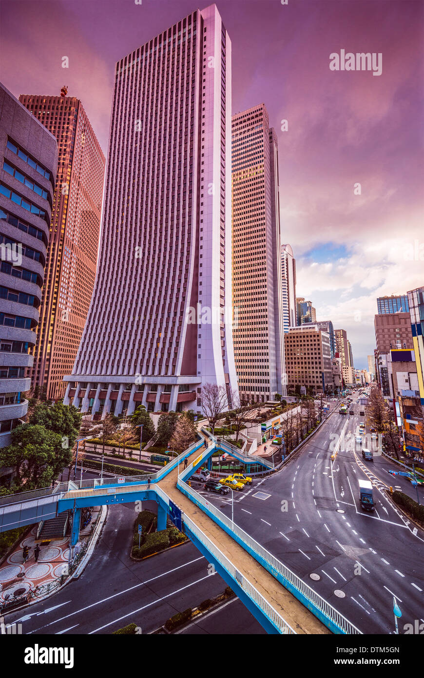 Tokyo, Japon cityscape à Shinjuku quartier gratte-ciel. Photo Stock