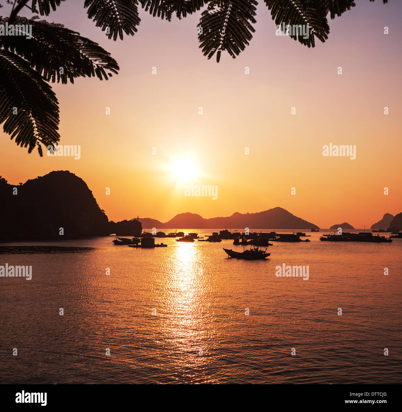 Halong Photo Stock