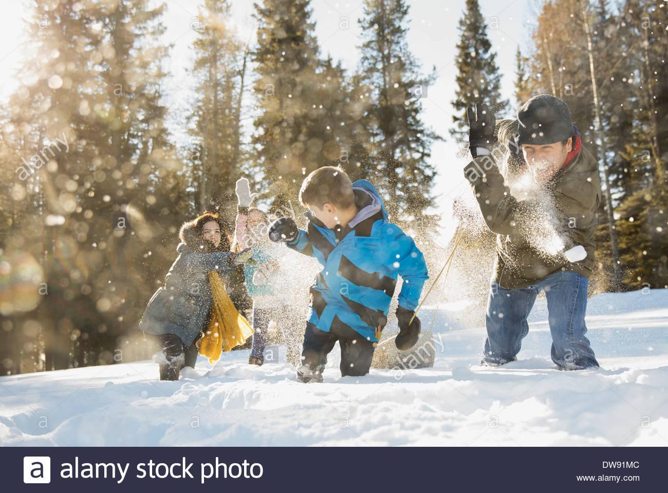 Ayant de la famille à l'extérieur de boules de neige Photo Stock