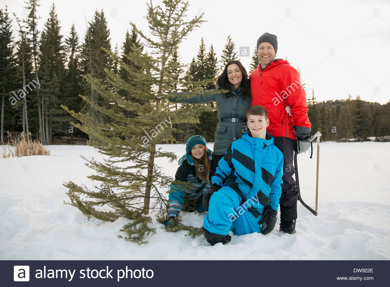 Portrait de deux génération family with Christmas Tree in snow Photo Stock
