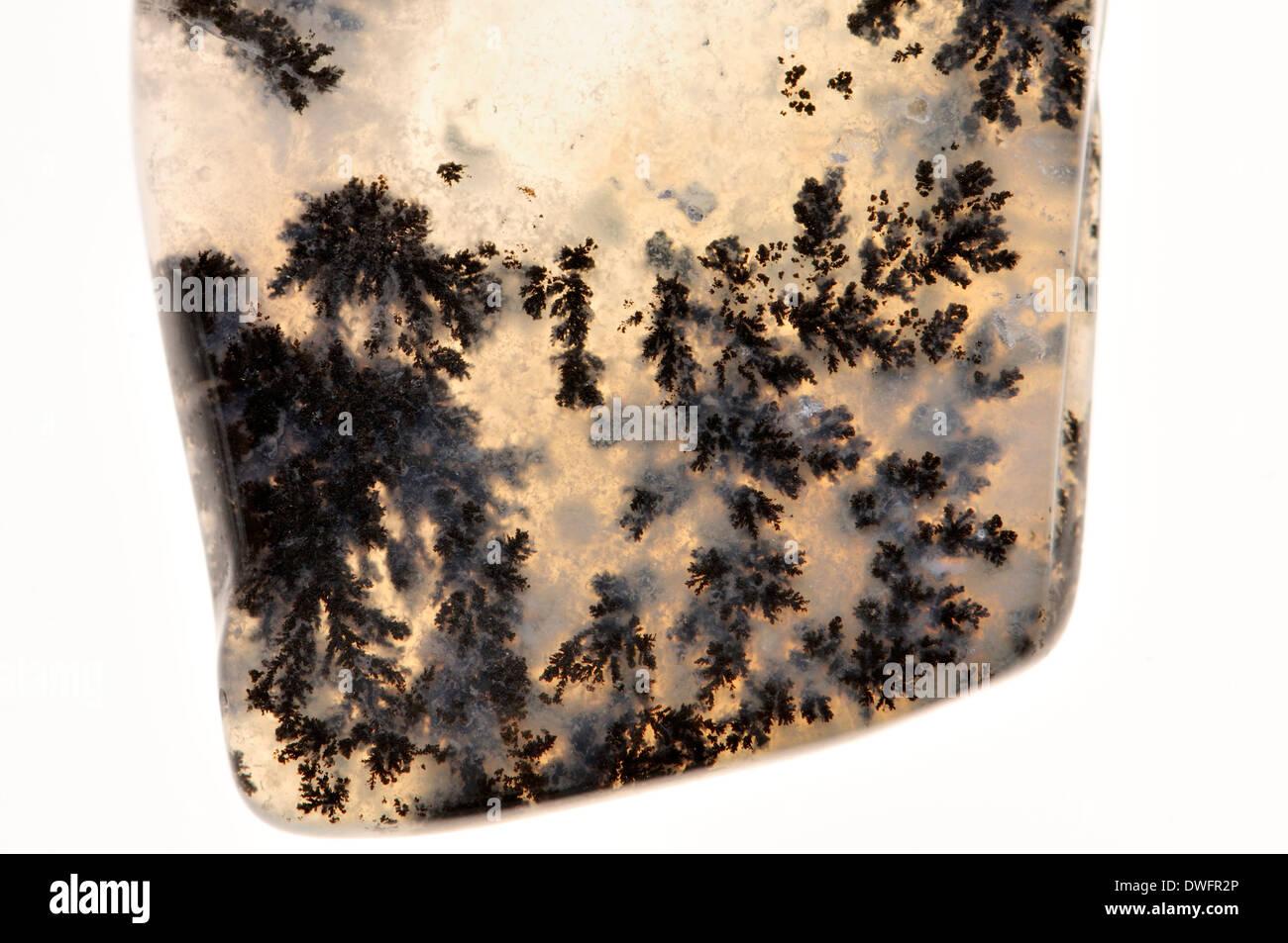 Quartz dendritique - quartz translucide contenant des dendrites de manganèse Photo Stock