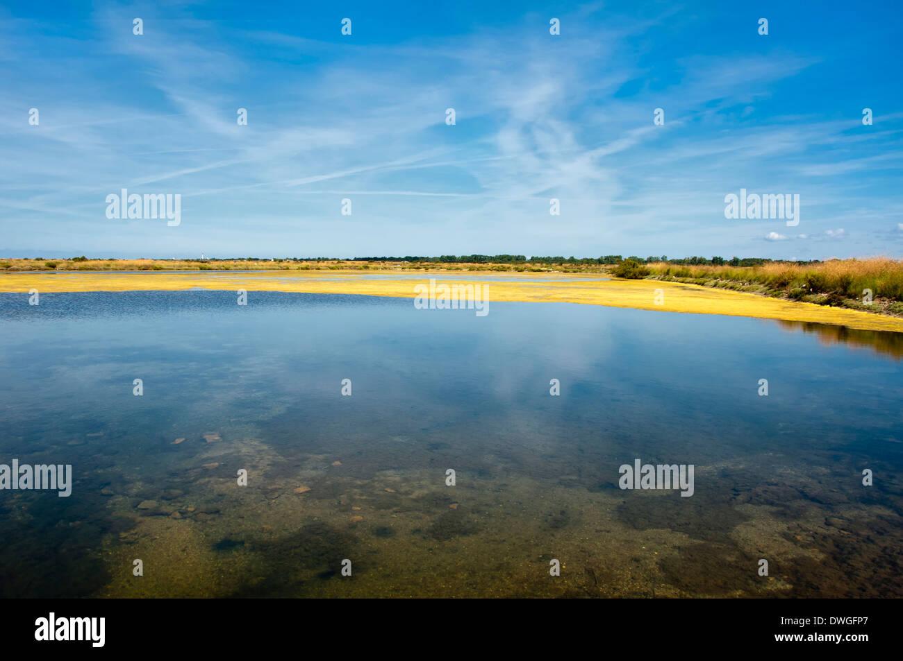 Marais du Fier d'Ars Photo Stock