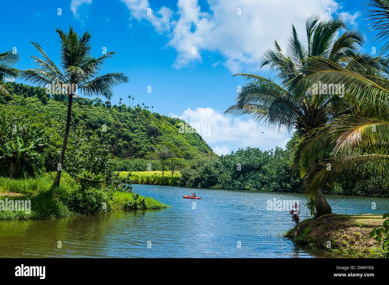 La rivière Wailua. Kauai, Hawaii, États-Unis d'Amérique, du Pacifique Photo Stock