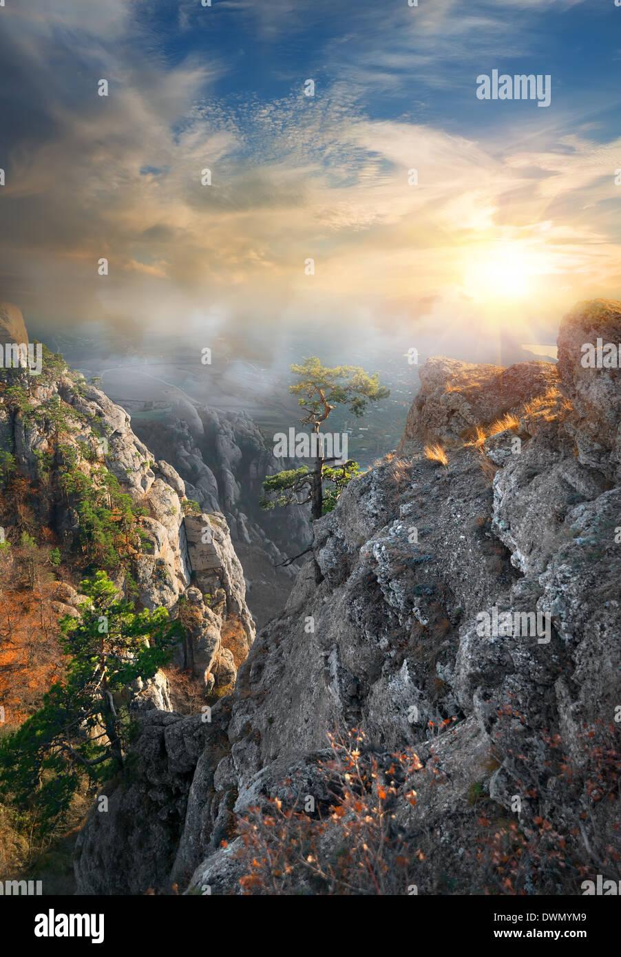 Le brouillard dans les montagnes sous le soleil de matin Photo Stock