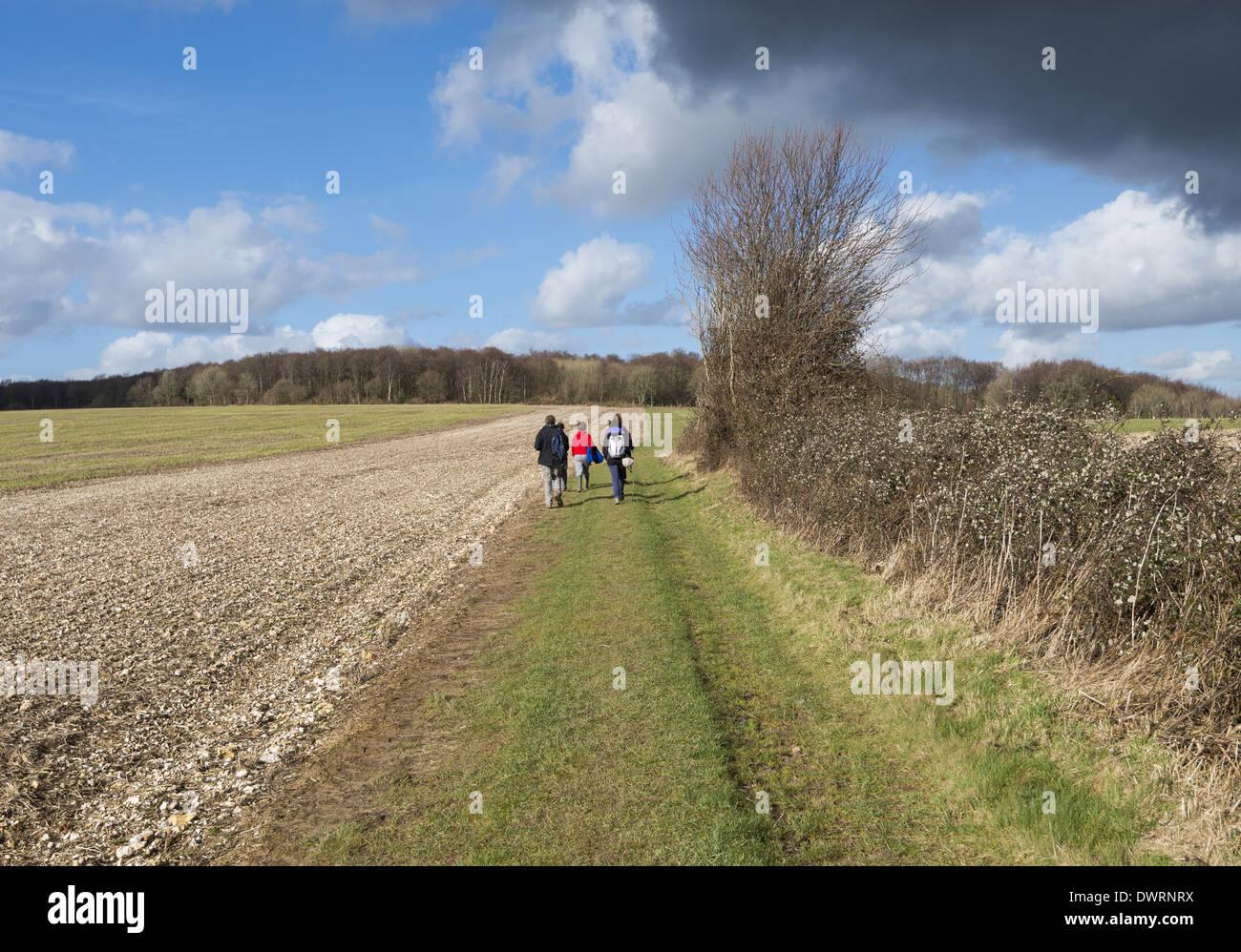 Groupe de jeunes gens marchant dans la campagne dans le Hampshire, England, UK Photo Stock