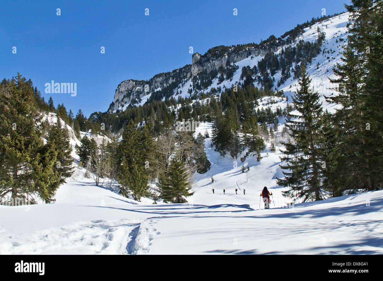 Les randonneurs en raquettes monter pour traverser l'Alpe Photo Stock