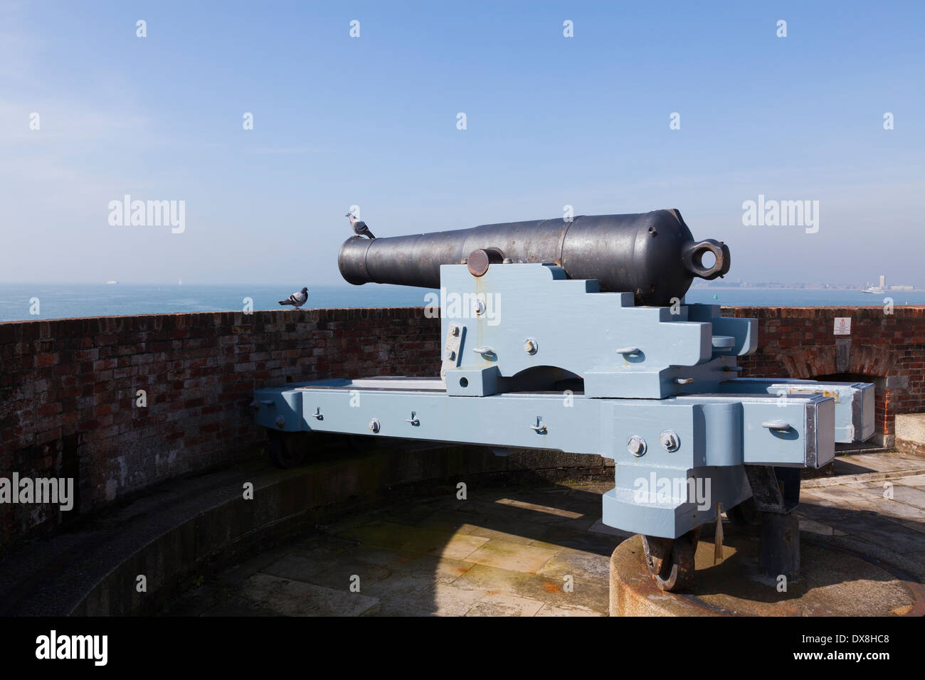 Pigeon dans le baril de fusil à canon pivotant le château de Southsea. Banque D'Images