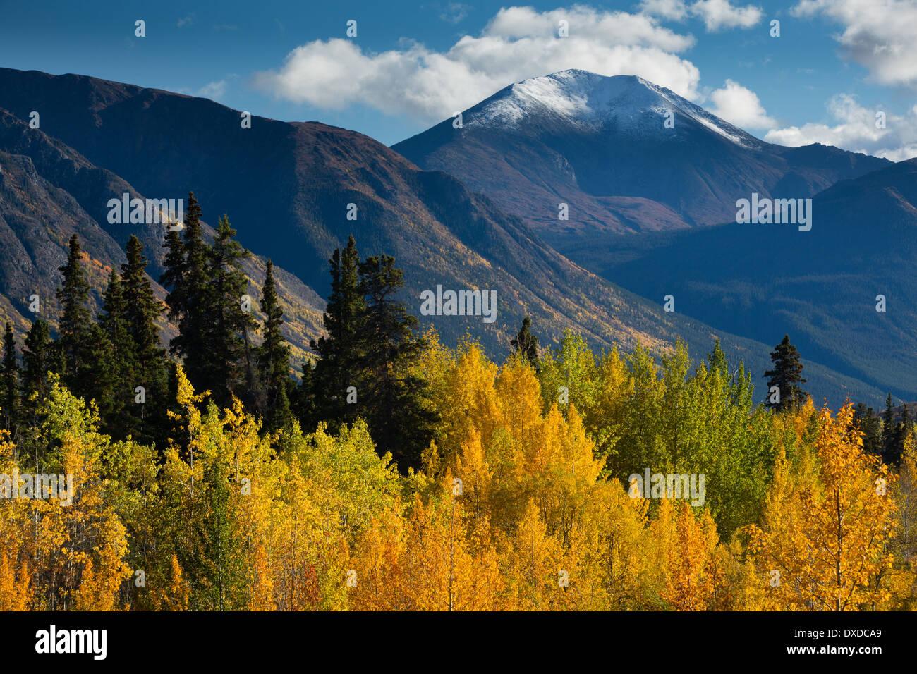 Couleurs d'automne sur la route du Klondike Sud nr lac Tagish, avec la montagne de l'escarpement, Territoire du Yukon, Canada Photo Stock