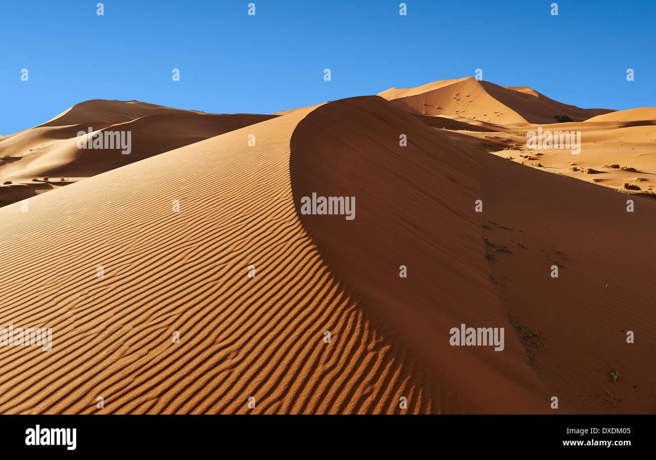 Sable parabolique Sahara dunes de l'erg Chebbi, Maroc, Afrique Photo Stock