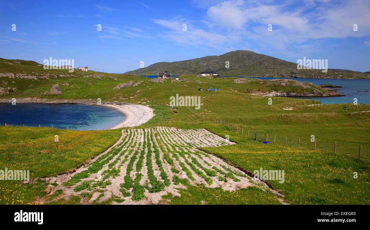 Lits paresseux et plages, Vatersay, Hébrides extérieures. Photo Stock