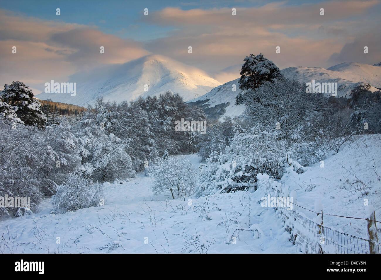 Vue d'hiver vers Ben plus, Crianlarich. Photo Stock