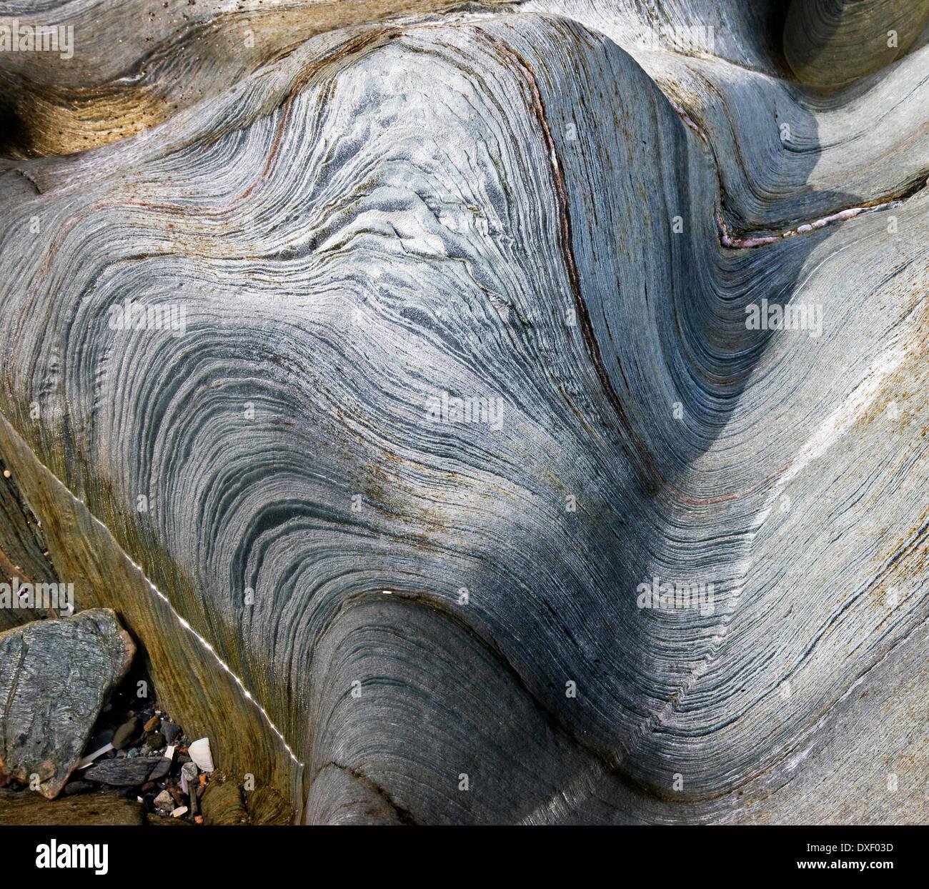 Phyllites pliée spectaculaire sur l'île d'Eriska, Argyll. Photo Stock