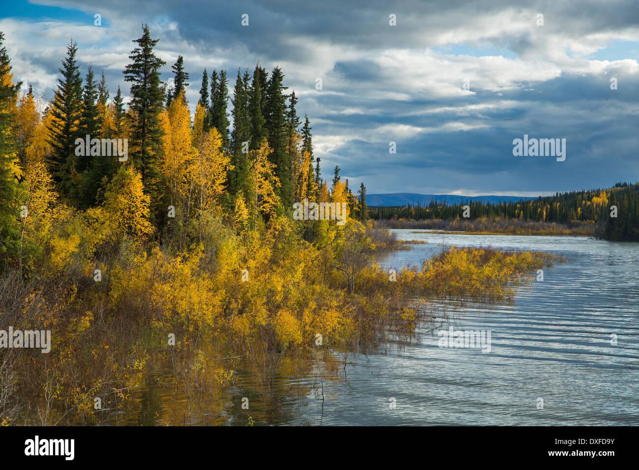 Couleurs d'automne de la forêt boréale dans la rivière Stewart Valley, Territoire du Yukon, Canada Photo Stock