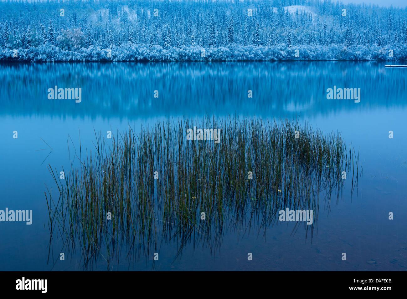 Couleurs d'automne et la première chute de neige à Five Mile Lake. Silver Trail, Territoire du Yukon, Canada Photo Stock