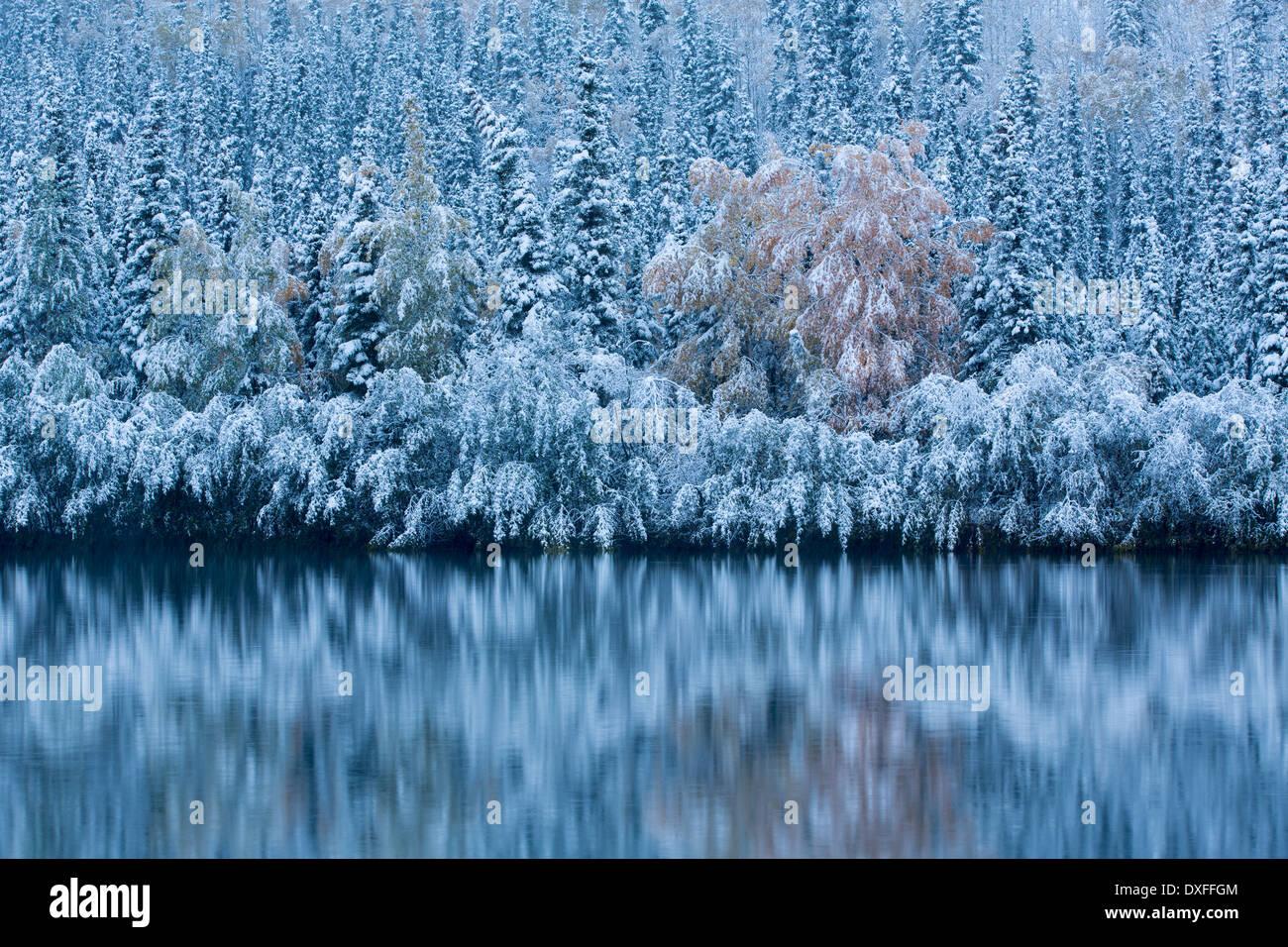 Début de la neige et des couleurs d'automne à Five Mile Lake, sur la piste de l'argent c Mayo, au Yukon, Canada Photo Stock