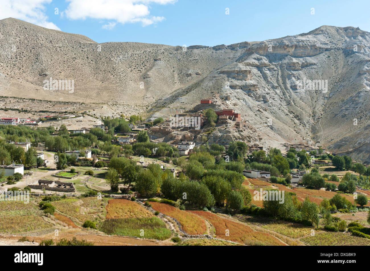 Le village de Geling avec les Tashi Choling Gompa, monastère, champs et arbres à l'avant, Gieling, Upper Mustang, Lo, Népal Photo Stock