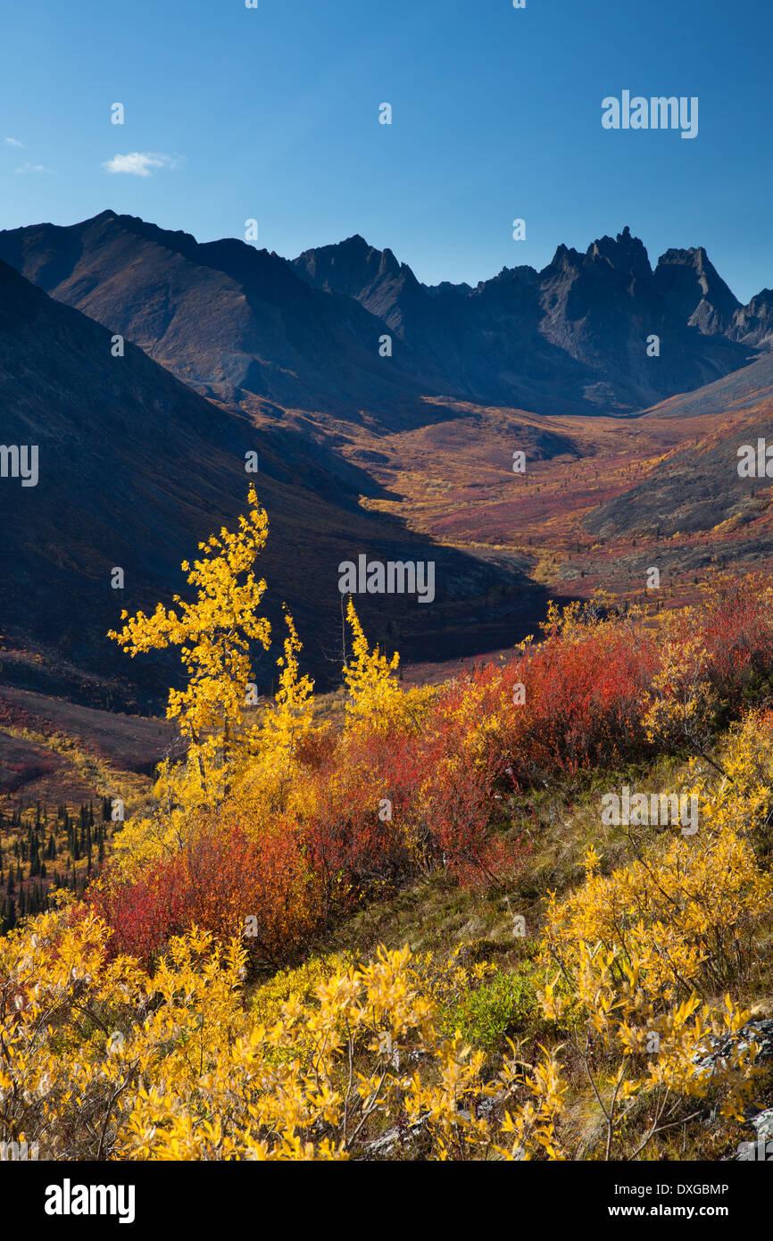Monts Tombstone et le Grizzly Creek supérieure à l'automne, le parc territorial Tombstone, Yukon, Canada Photo Stock
