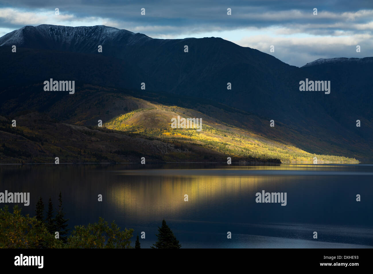 Un fin rayon de soleil sur lac Tutshi, British Columbia, Canada Photo Stock