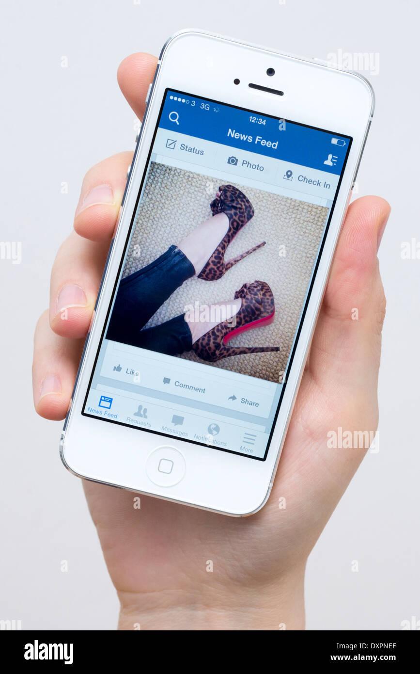 Facebook sur iPhone 5 blanc Photo Stock