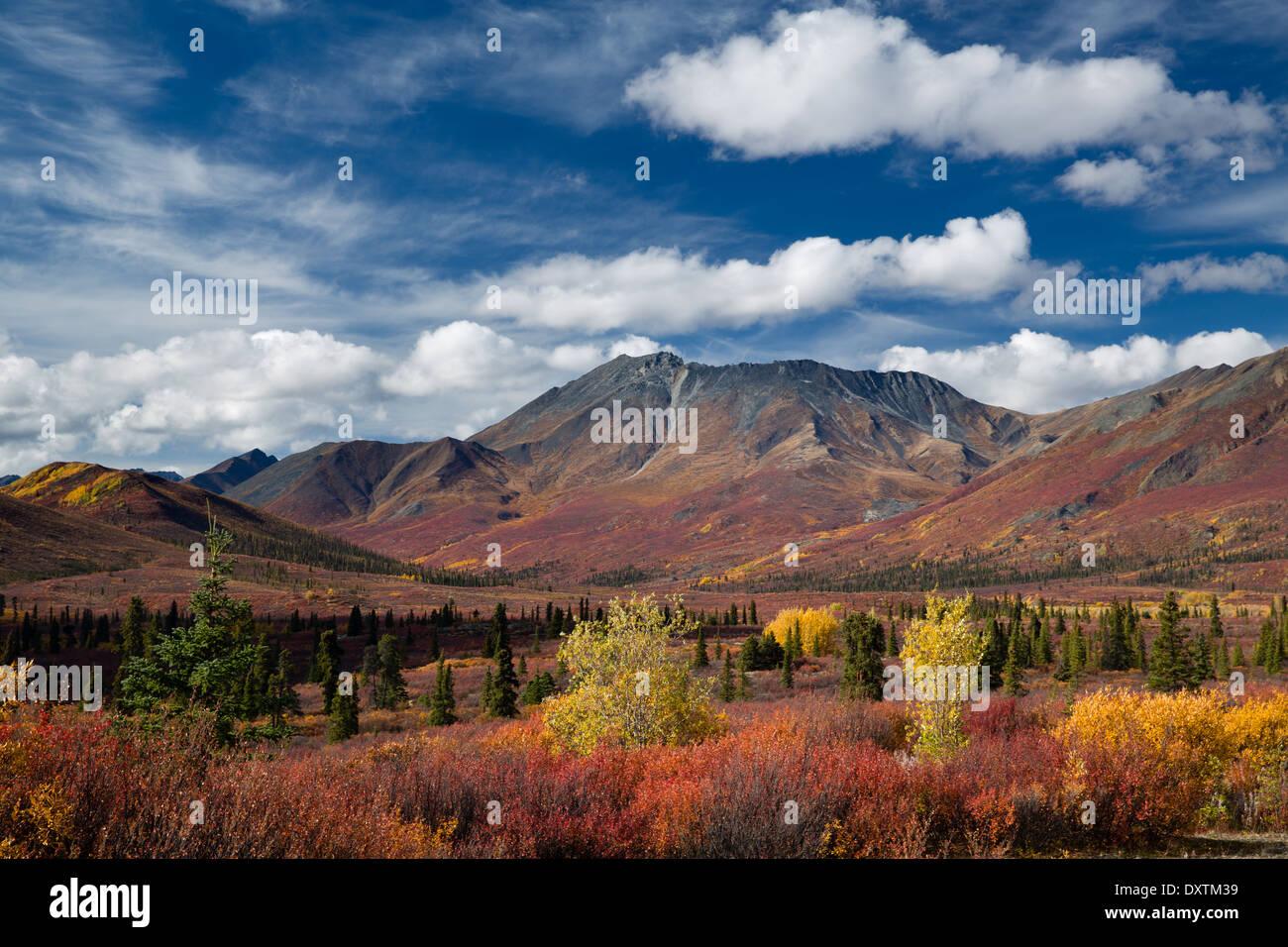 Couleurs d'automne et de la cathédrale de la montagne, le parc territorial Tombstone, Yukon, Canada Photo Stock