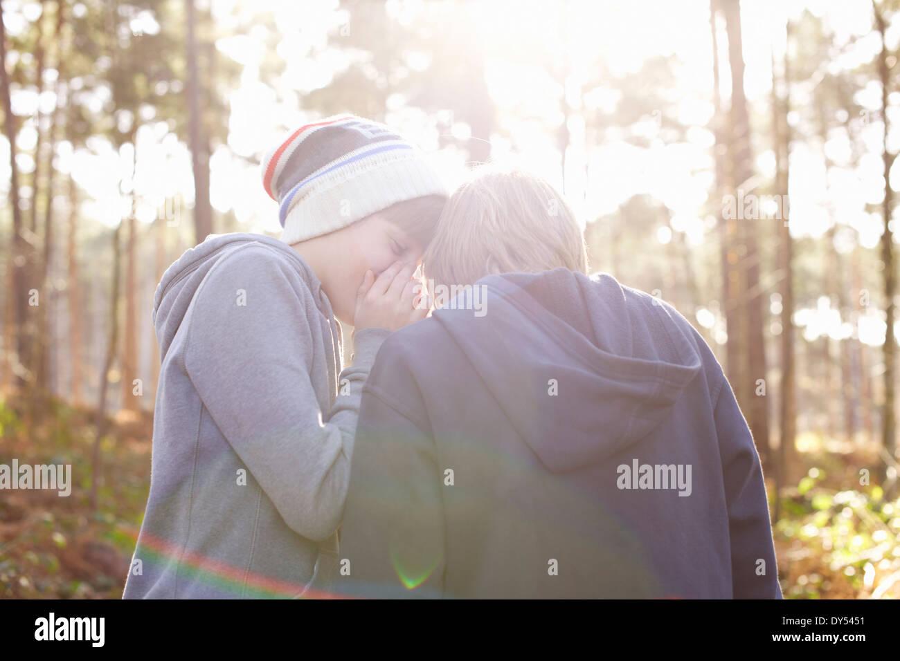 Les frères jumeaux whispering Woods dans les plans Banque D'Images